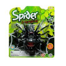 Pavouk na setrvačník