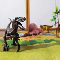 Zvířata dinosauři - sada s podložkou